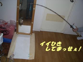 20051124170611.jpg