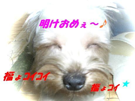 20060105202244.jpg