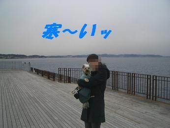 20060107115204.jpg