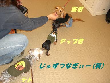 20060129173109.jpg