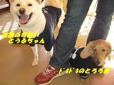 20060129173403.jpg