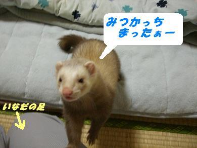 20060401112342.jpg