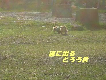 20060410171246.jpg