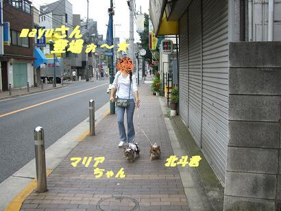 20060627094650.jpg