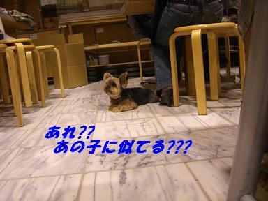 20060914151444.jpg