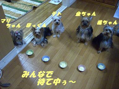 20060924020116.jpg
