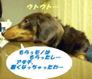 20070101134921.jpg