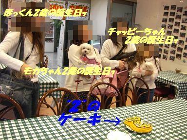 20070121213046.jpg