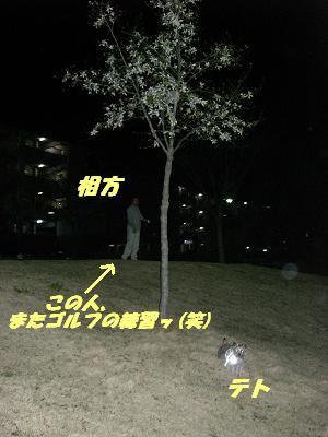 20070330003159.jpg