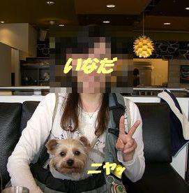 20070402200328.jpg