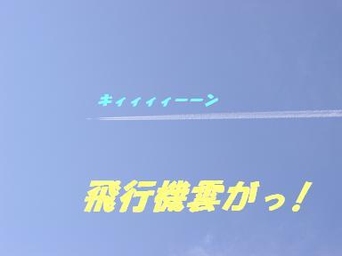 20070429195348.jpg