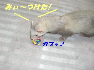 20070528225637.jpg