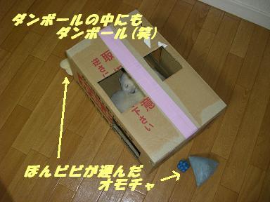 20070530145243.jpg