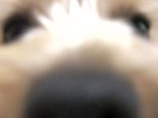 20070614164040.jpg