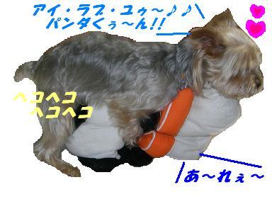 20070626163922.jpg