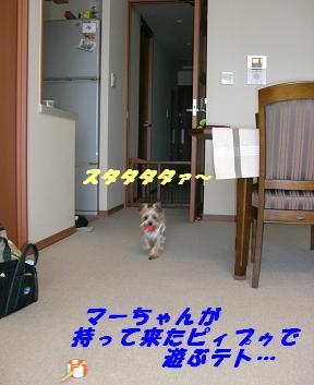 20070806232857.jpg