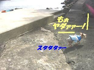 20070906210735.jpg