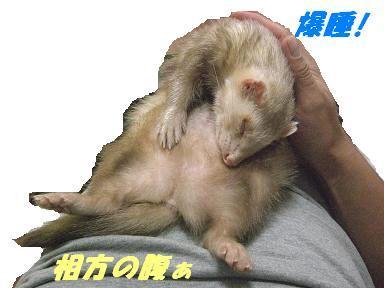 20071102100707.jpg