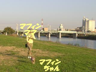 20071107195057.jpg