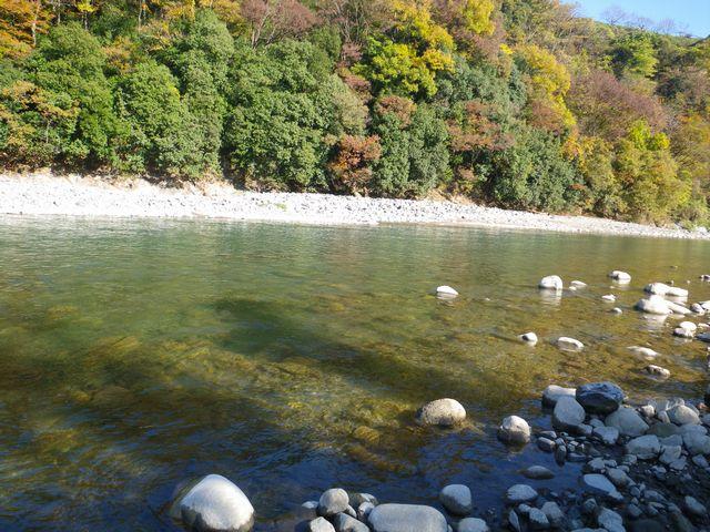 桂川下見12_15