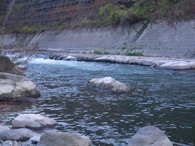 桂川下見12_129