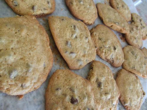 080519cookie.jpg