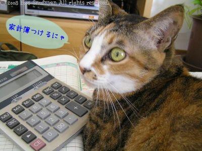 家計簿つけるにゃ