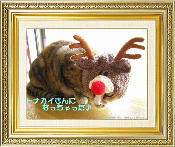 ねこ 猫 クリスマス祭り01すなふ家の『タカトナカイ』