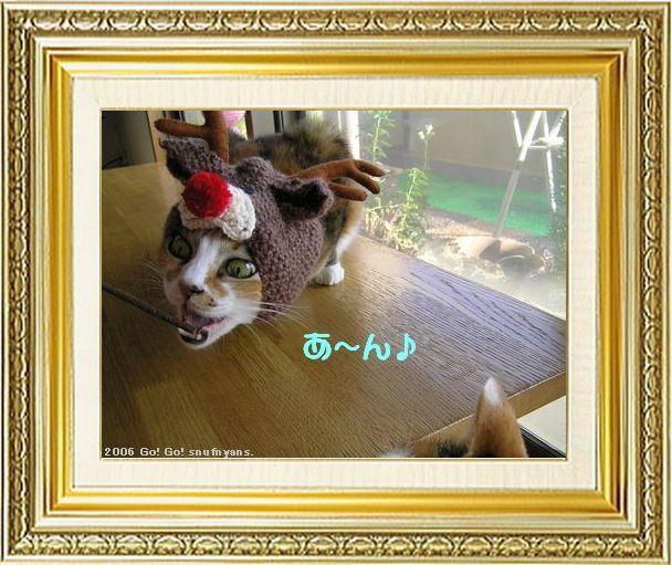 ねこ 猫 クリスマス祭り02すなふ家の『あ~んぐり タカトナカイ』