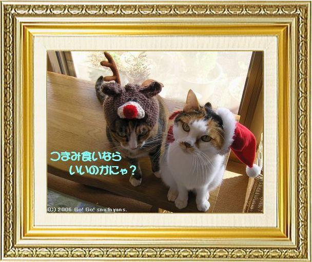 ねこ 猫 クリスマス祭り04すなふ家の『サンタ&トナカイ』