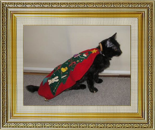 ねこ 猫 クリスマス祭り11okanさま家コロンツリー