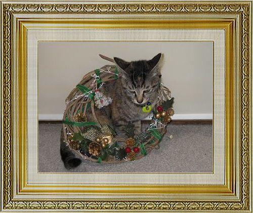 ねこ 猫 クリスマス祭り12okanさま家ココァリース
