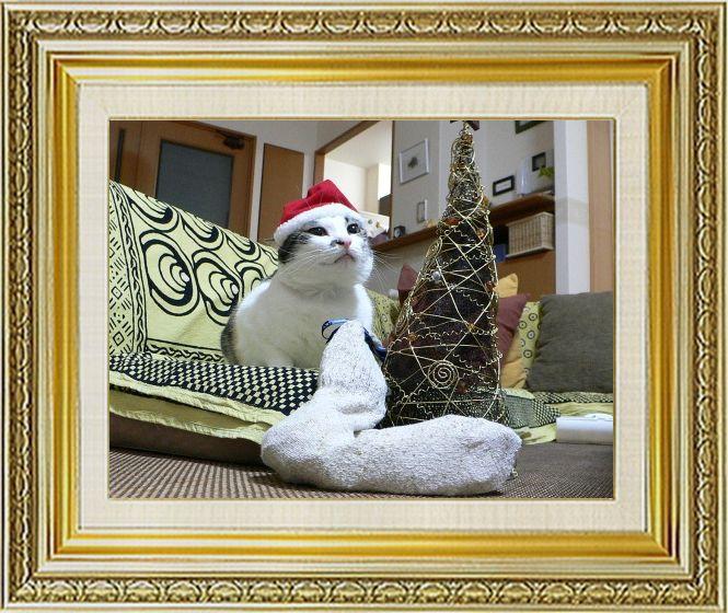 ねこ 猫 クリスマス祭り19しも1さま家2004年知恵蔵サンタ