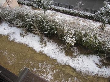yuki1_20110318215214.jpg
