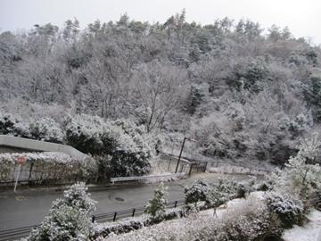 yuki4_20110318215213.jpg