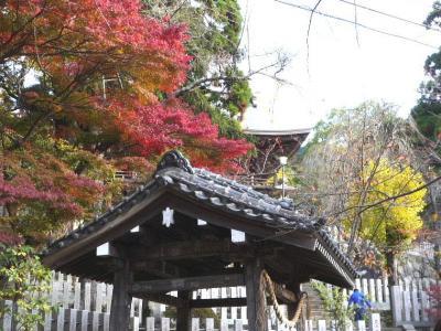 2008.秋 筑波山へ (2)