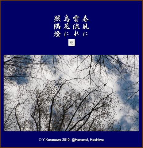 100322花鳥風木