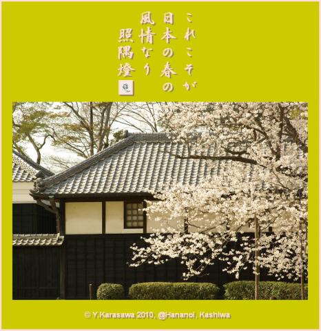 100409日本の春