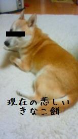 201001222047000.jpg