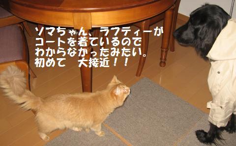 001_convert_20100429114109.jpg