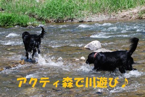 001_convert_20100430201208.jpg