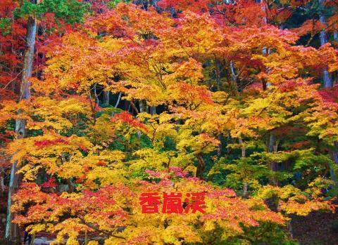 002_convert_20091130112950.jpg