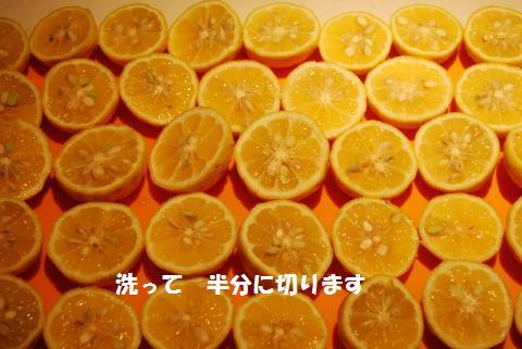 003_convert_20091211124507.jpg
