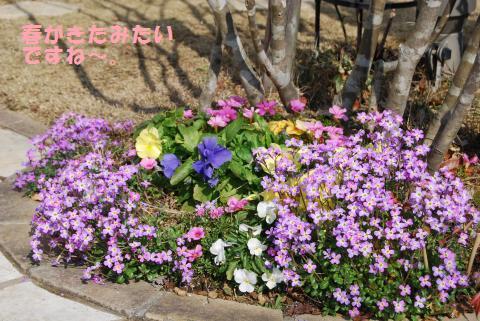 003_convert_20100210111326.jpg