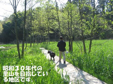 003_convert_20100425212102.jpg