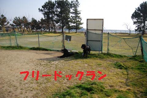005_convert_20100224215219.jpg