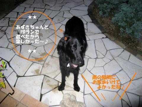 006_convert_20091023210650.jpg