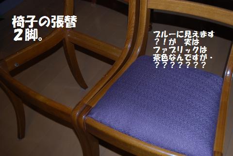 006_convert_20091124233447.jpg