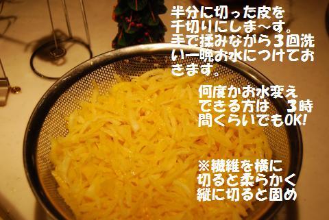006_convert_20091211125155.jpg