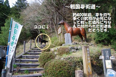 006_convert_20100328215459.jpg